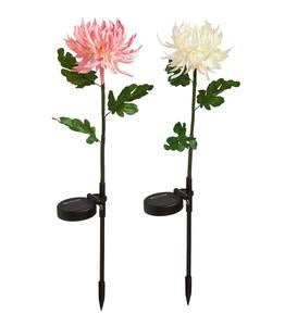 Solar Flower Garden Stakes, Set of 2