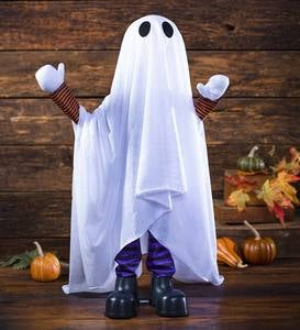 Motion-Activated Talking Ghost Halloween Decoration