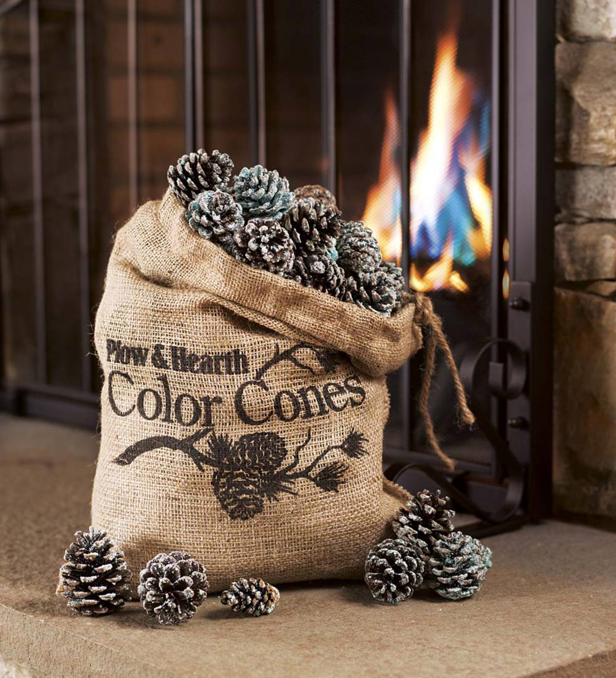 Color-Changing Fireplace Color Cones, 2 lb. Bag