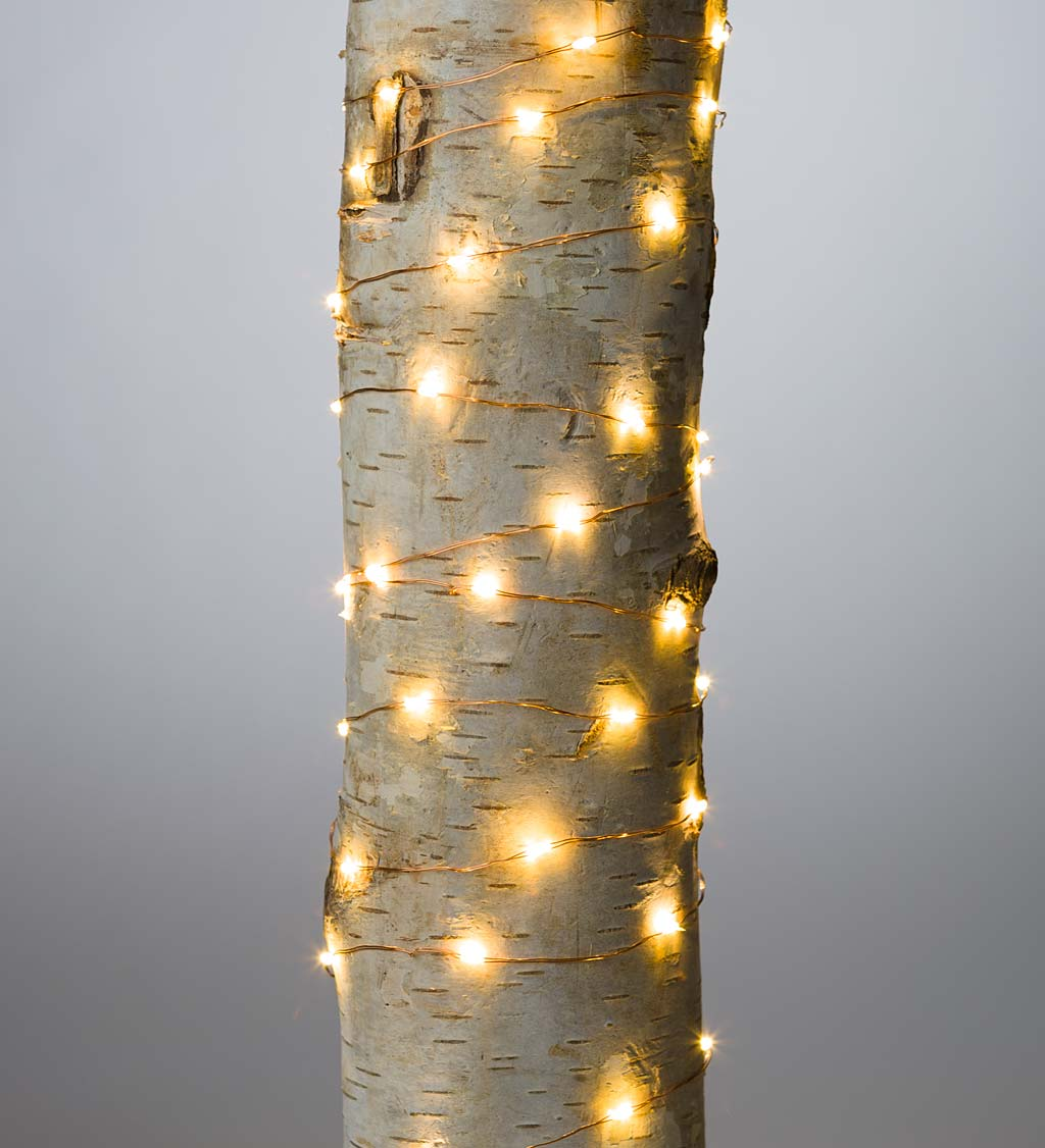 "Firefly String Lights, 60 Warm White LEDs on Copper Wire, Battery Operated, 9'10""L"