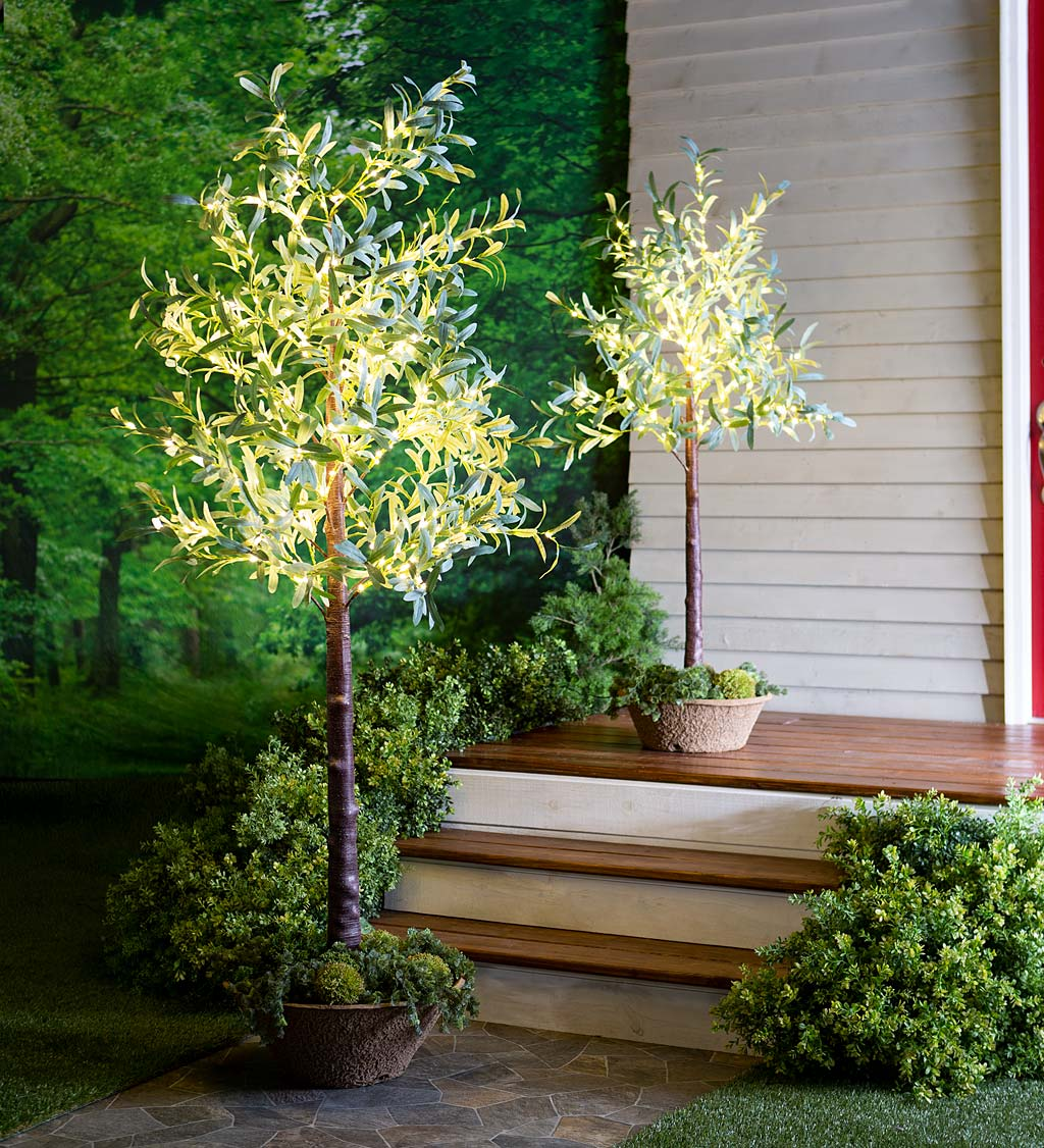 Lighted Faux Olive Tree with Warm White LED Lights