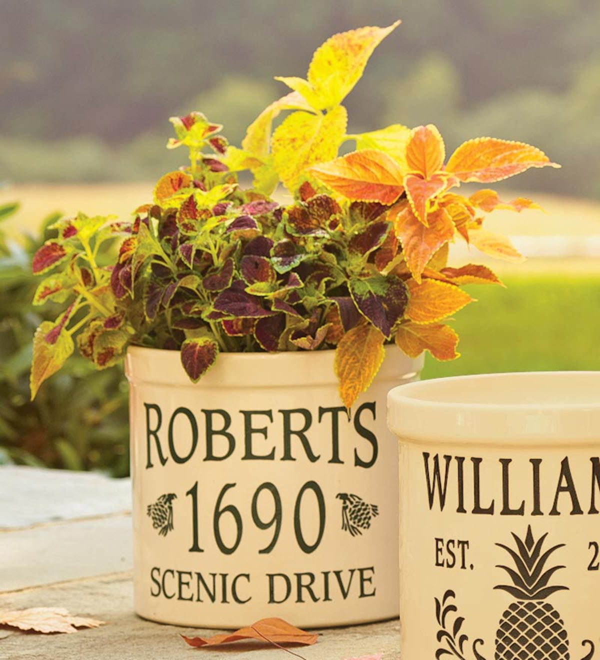 Pine Cone-Styled Personalized Crock