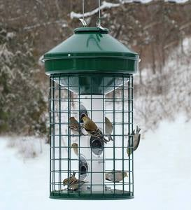 Squirrel-Resistant Caged Tube Bird Feeder