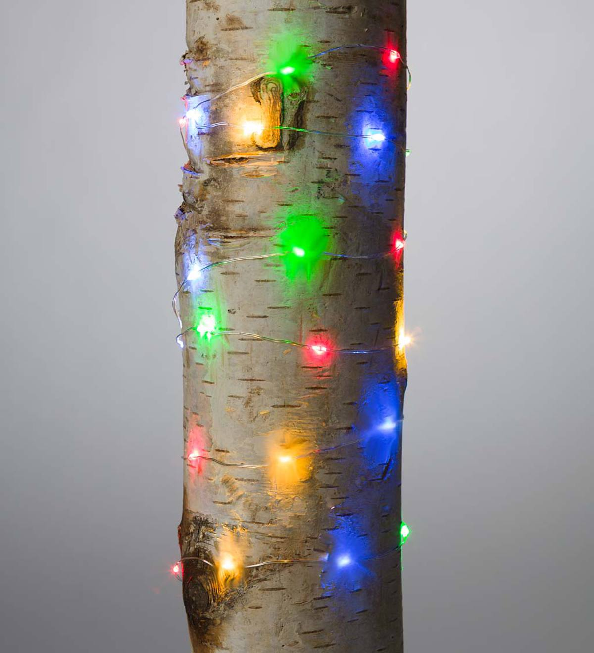 "Firefly String Lights, 40 Multi LEDs on Silver Wire, Battery Operated, 6'6""L"