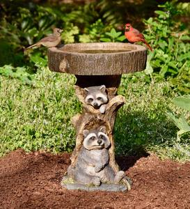 Resin Raccoon Birdbath