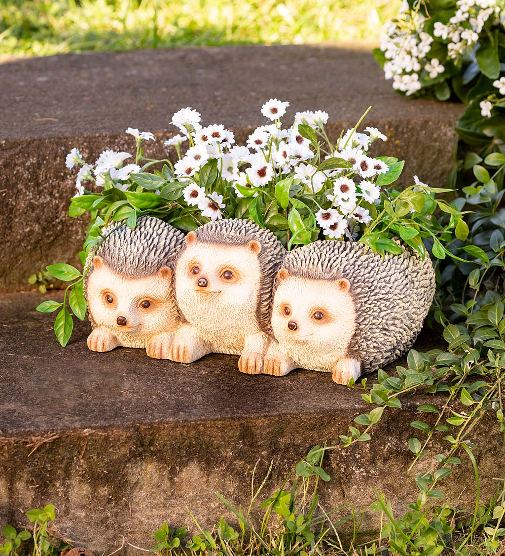 Hedgehog Triplets Planter