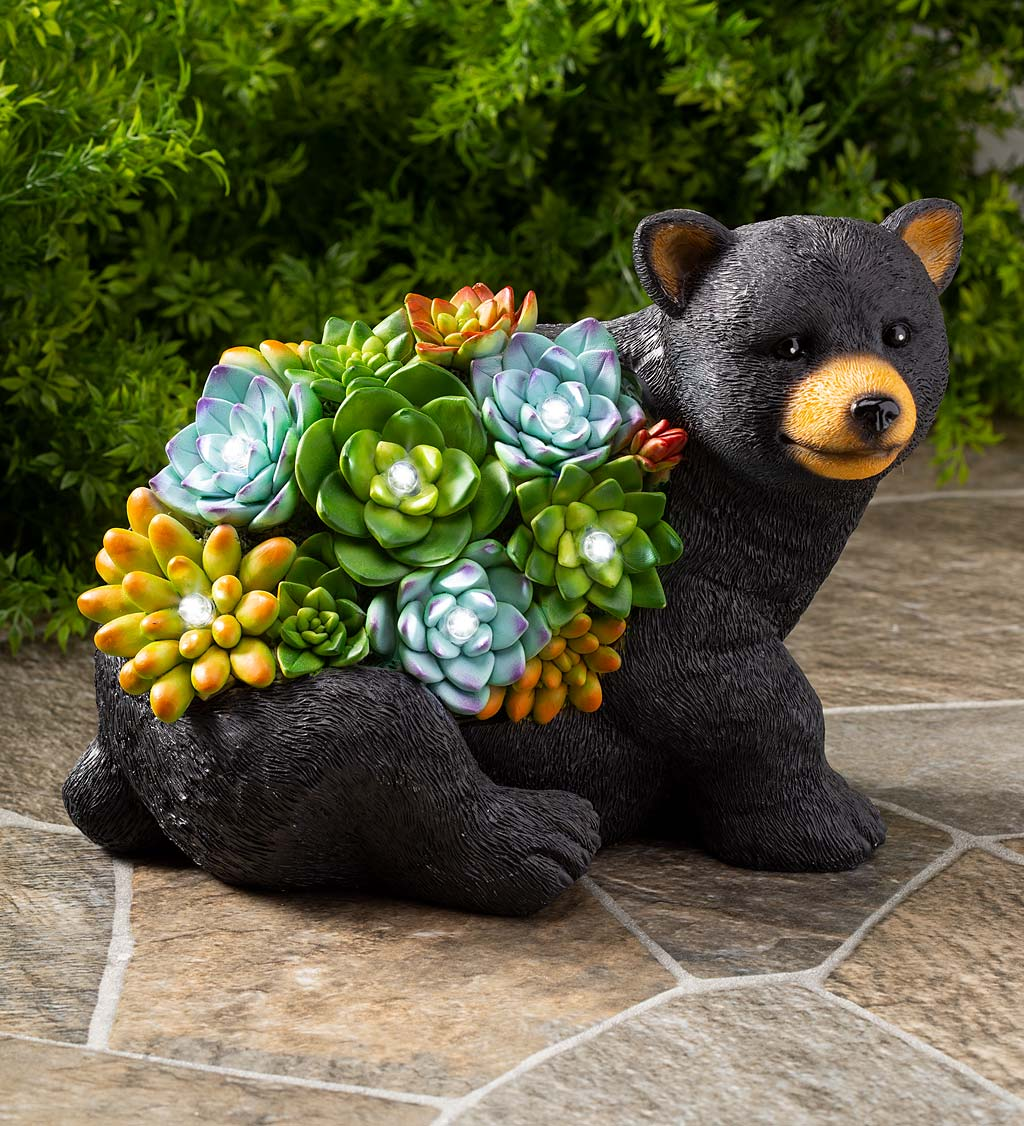 Solar Lighted Bear Statue with Succulent Accents