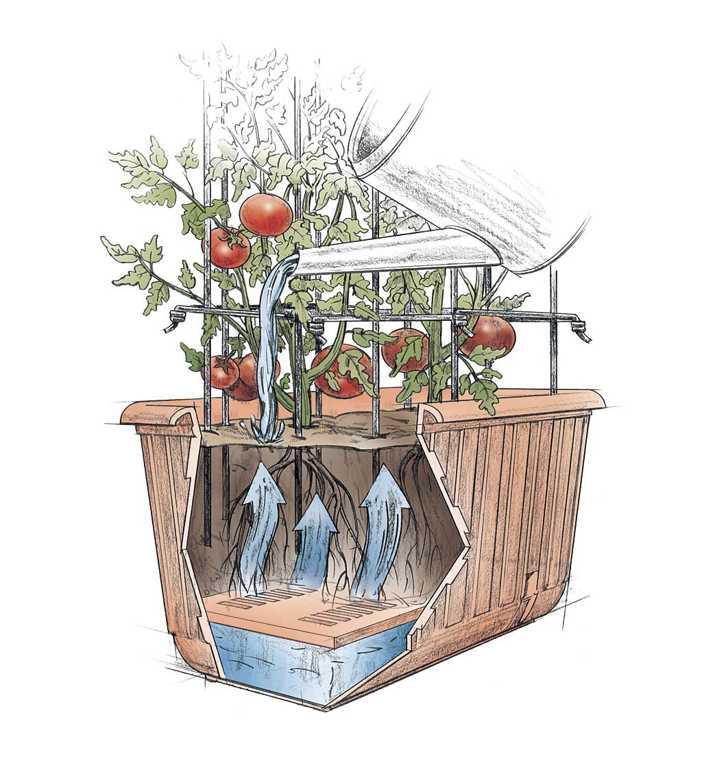 Self-Watering Tomato Planter and Rust-Resistant Tower