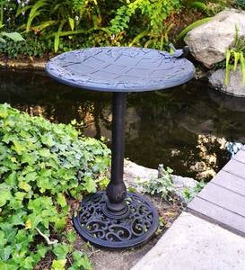 English Ivy Pedestal Birdbath