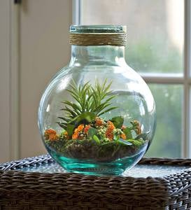 Recycled Glass Terrarium Jar