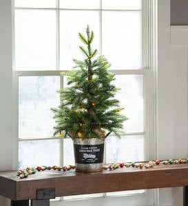 Lighted Tabletop Christmas Tree in Galvanized Bucket