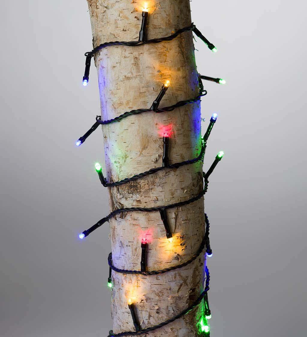 81' L Multifunction Twinkle String Lights, 368 LEDs on Black Wire