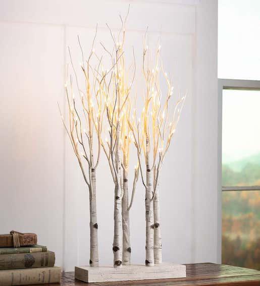 Image of Birch Tree Lineup